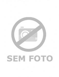Antônio Rodrigues da Silva